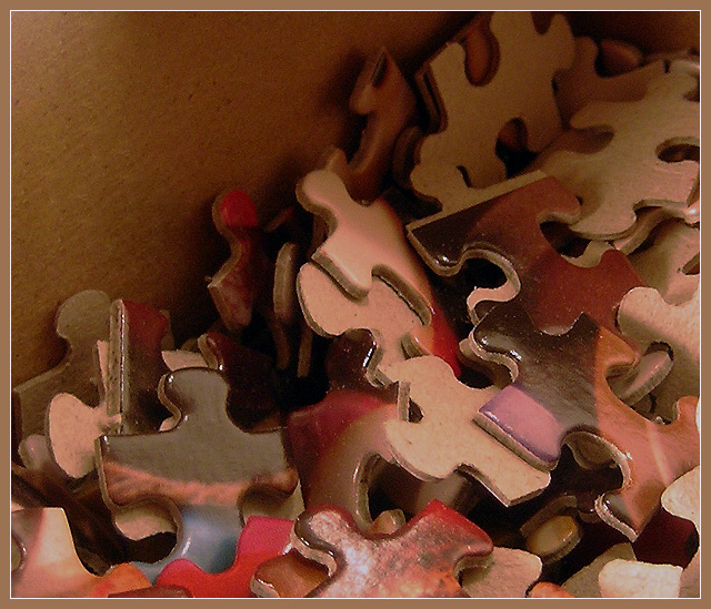 """""""Just Puzzling"""""""