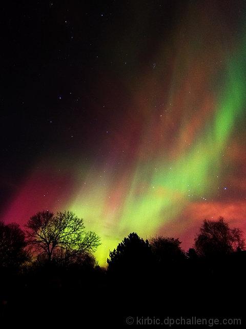 November- Auroral Majesty
