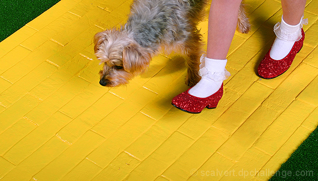 Follow The Yellow Brick Road By Scalvert