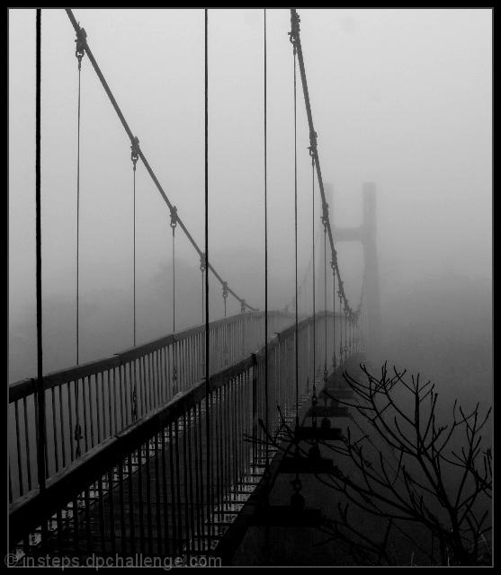 Silent Crossing