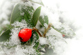 A Berry Merry X'mas DPCers!