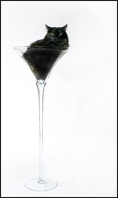 Martini Lounge