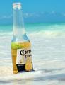 Beautiful Ocean and A Beer = Comfort