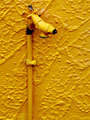 The Old Yellow Tap