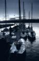 Docked at Dawn