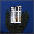 A window framed