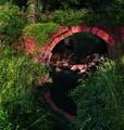 bridge over dirty water