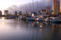 Dreamy Harbor Evenings