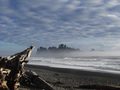 Clouds and Driftwood