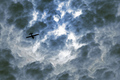 Cloud Flyer - Sepia
