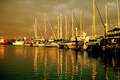 Boat Harbour By Night