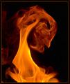 Portrait of the Demon