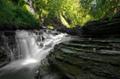 Dreamy Creek