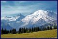 A Mountain Stroll