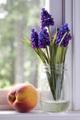 Simple Beauty  -  Fresh Peach and Lilacs (Soft Focus)