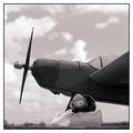 Famous Aviators - Amelia Duckhart