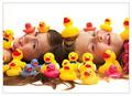 Gone Quackers