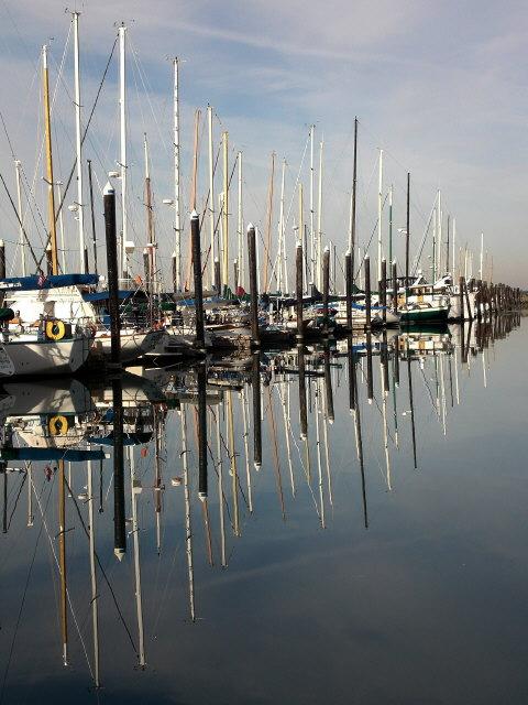 Squalicum Marina Reflections