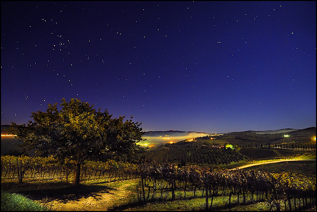 What a little moonlight can do...  (Tuscany vineyards)