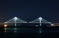 Sweet Charleston Nights