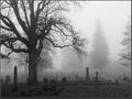 Death is a Fog