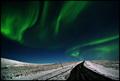 The Artic Magic