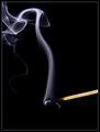 Quit Smokin'