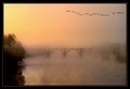 Foggy Dawn on the Rappahanock River