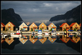 Cabins With Fjord View