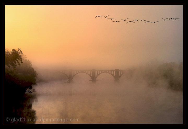 Foggy Dawn on the Rappahanock River