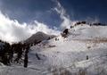 Mt. Allen
