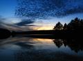 Mirrored Silence