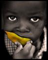Mango:Kenya