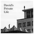 David's Private Life