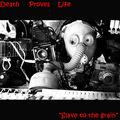Death Proves Life