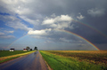 Why Are There So Many Songs About Rainbows?