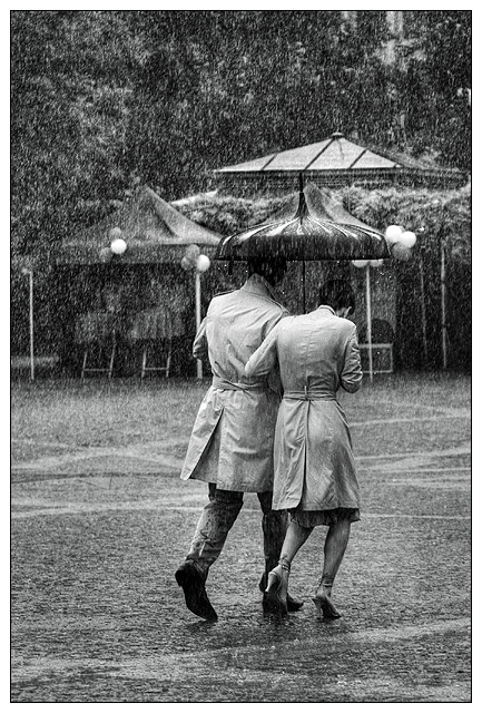 The Shared Umbrella