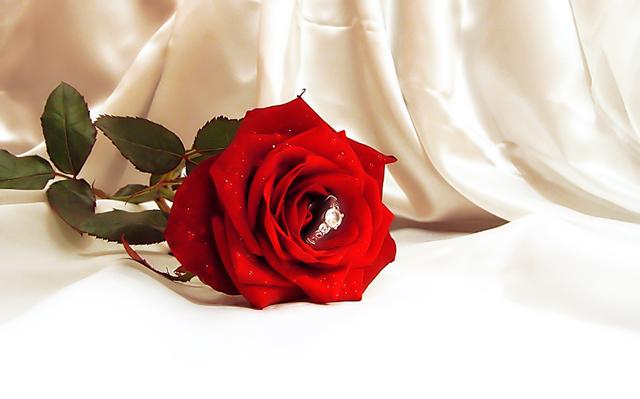 will u marry me by kliopatra dpchallenge