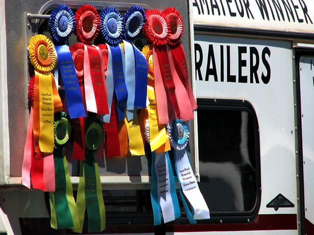 """Amateur"" Winner My A**!"