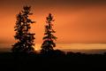 Queensville Sunset