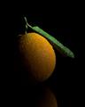 Orange Crescent