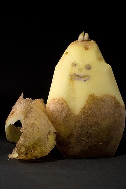 Peeled like a potato