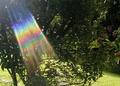 The unseen spectrum of light