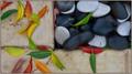 ...colour garden