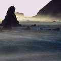 Rocks & Colors emerge from the Fog on the Pacific