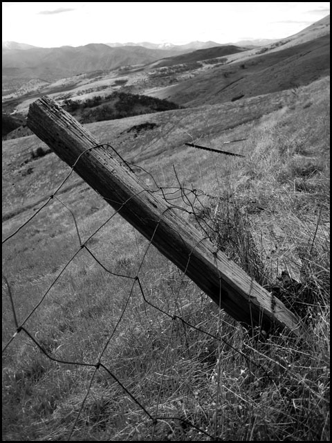 fence on a hill
