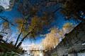 Impressionism 3628