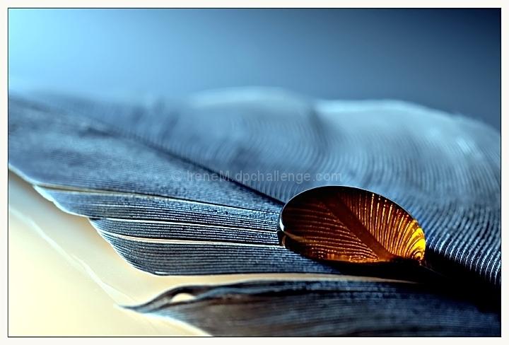 Textures...