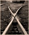 Rail Frog