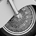 Covered Spokes